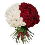 Розы-цветные-15-min