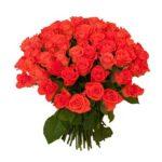 Розы-коралловые-2-min
