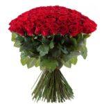 Розы-красные-6-min