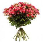 Розы-малиновые-3-min